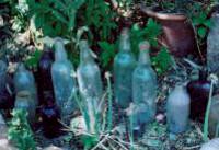 Pit Bottles 200