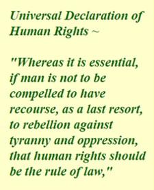 universal-declaration-of-human-rights-225